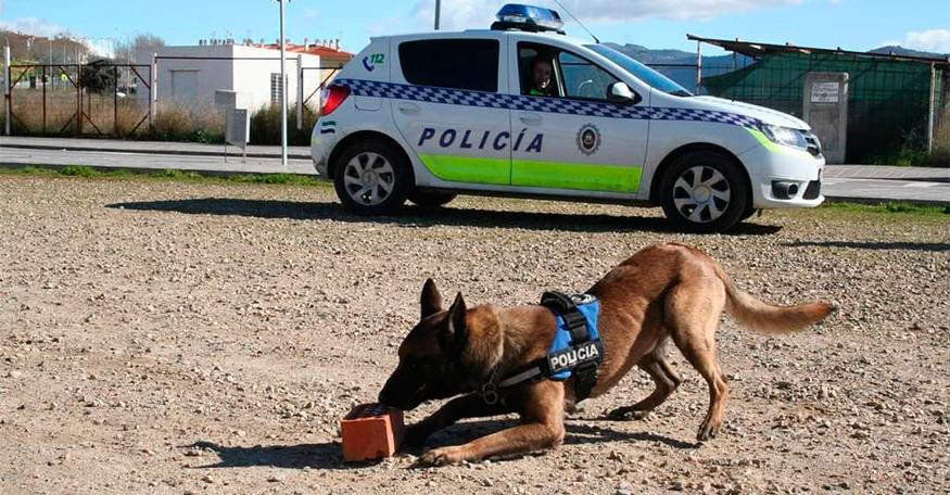 Detenidas dos personas por tráfico de drogas gracias a la unidad canina de Plasencia