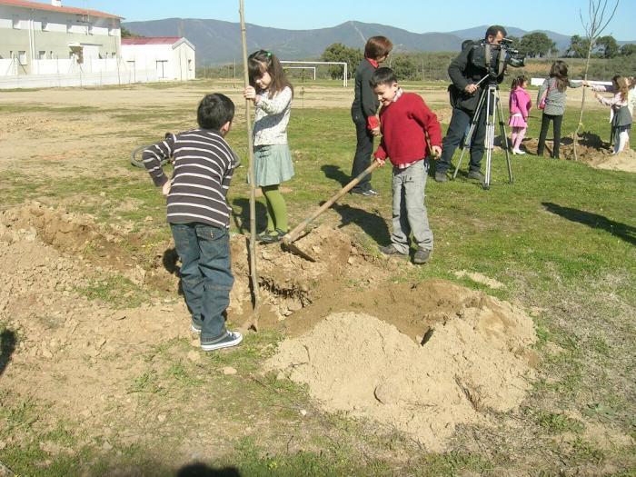 Villanueva de la Sierra celebrará la 217 Fiesta del Árbol con la plantación de ejemplares