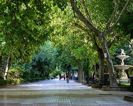 Extremadura suma tres brotes familiares en Olivenza, Badajoz y Torrecillas de la Tiesa