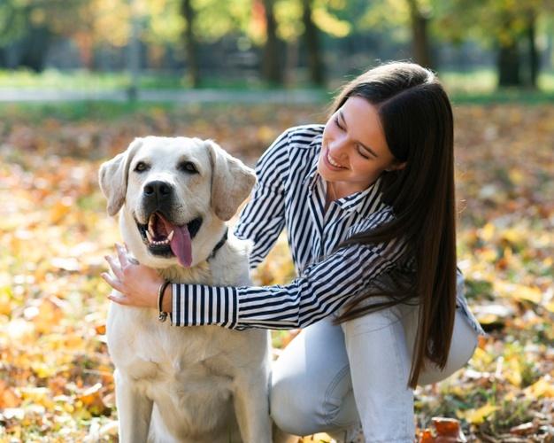 Arranca en Cáceres la instalación de nuevo mobiliario para los parques caninos