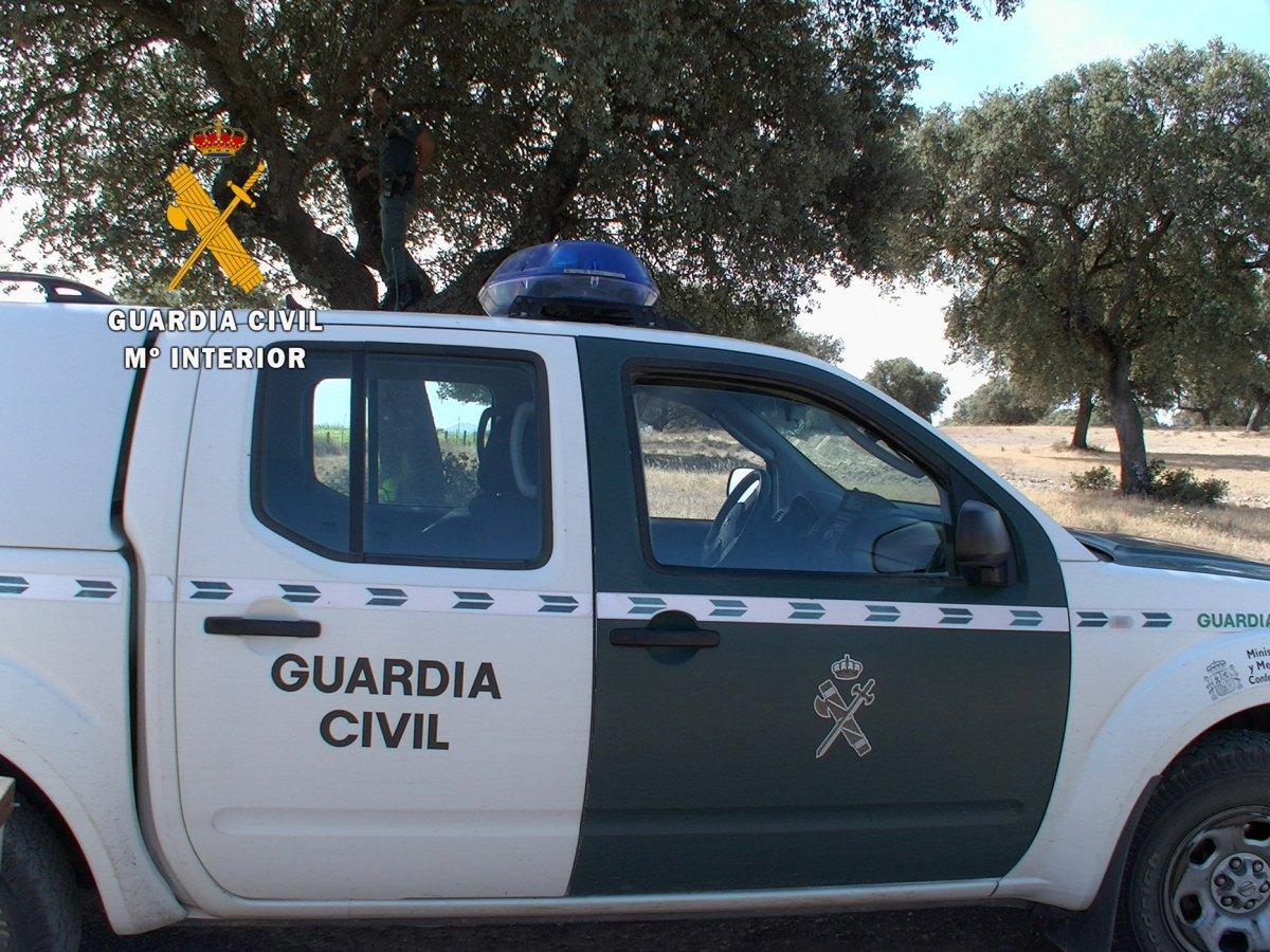 Detenido un vecino de Navalvillar de Ibor por matar un perro tras dispararle con una escopeta