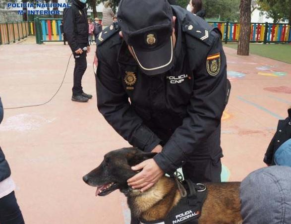 La unidad de Guías Caninos de la Policía Nacional muestra su labor a los escolares de Badajoz