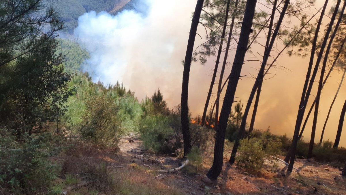 El Plan Infoex da por controlado un incendio declarado en Descargamaría