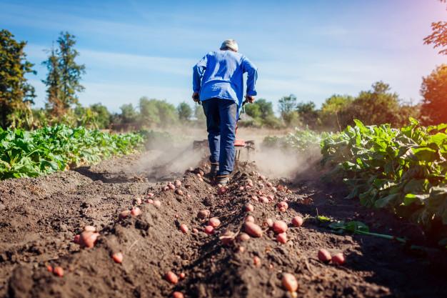 La Consejería de Agricultura ya ha registrado 3.647 solicitudes de la PAC 2021