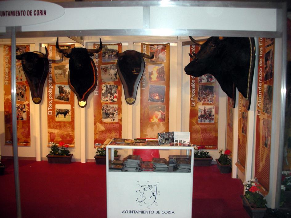 El PP demanda apoyo económico e institucional para la Feria del Toro de Coria