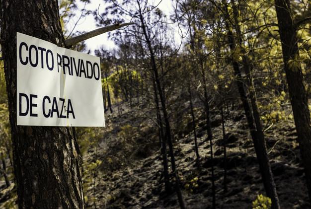 Más de 5.000 cazadores participan en el sorteo público de caza de Extremadura para la campaña 2021/2022