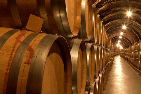 Almendralejo comienza a buscar los mejores vinos y cavas de Extremadura