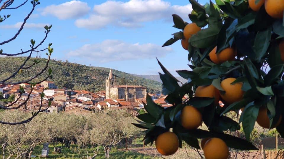 Turisgata sortea a golpe de click cenas y rutas en 4×4 para avistar buitres en Sierra de Gata
