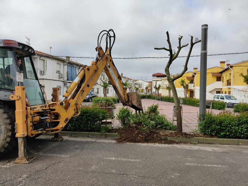 Arrancan las obras de la Plaza de la Paz de Moraleja para crear un  espacio más accesible