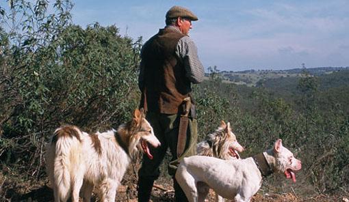 La montería y la rehala de Extremadura serán Bien de Interés Cultural