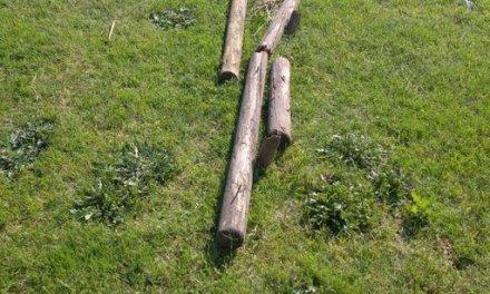 Moraleja cerrará el parque fluvial la madrugada de los fines de semana para evitar actos vandálicos