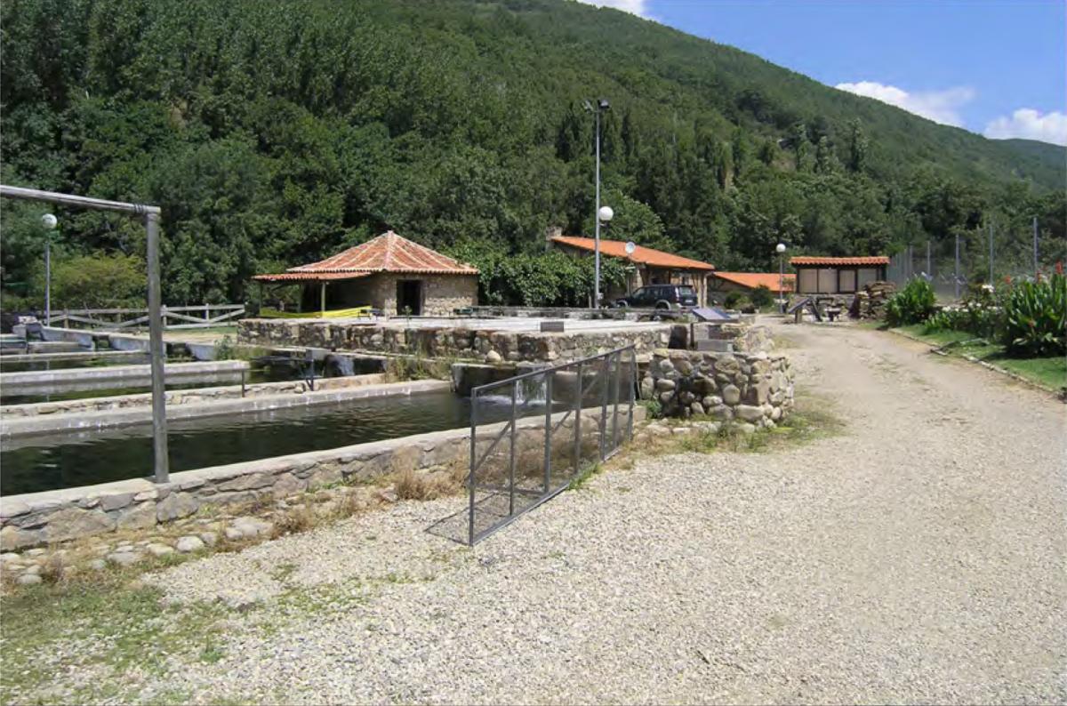 Extremadura busca personal para trabajar en dos piscifactorías de la región