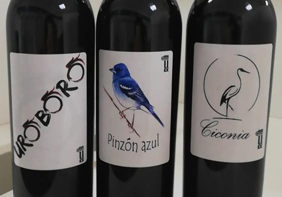 El Concurso VinEspaña premia tres vinos elaborados por estudiantes de la Universidad de Extremadura