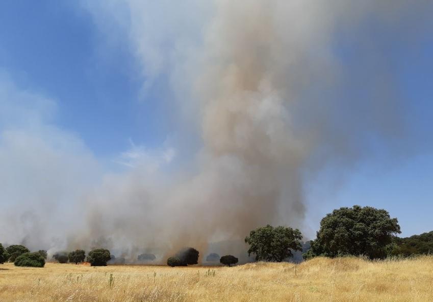 El Infoex interviene durante esta semana en 37 incendios forestales