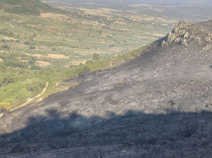 El Plan Infoex interviene en 23 incendios forestales en los últimos siete días en Extremadura