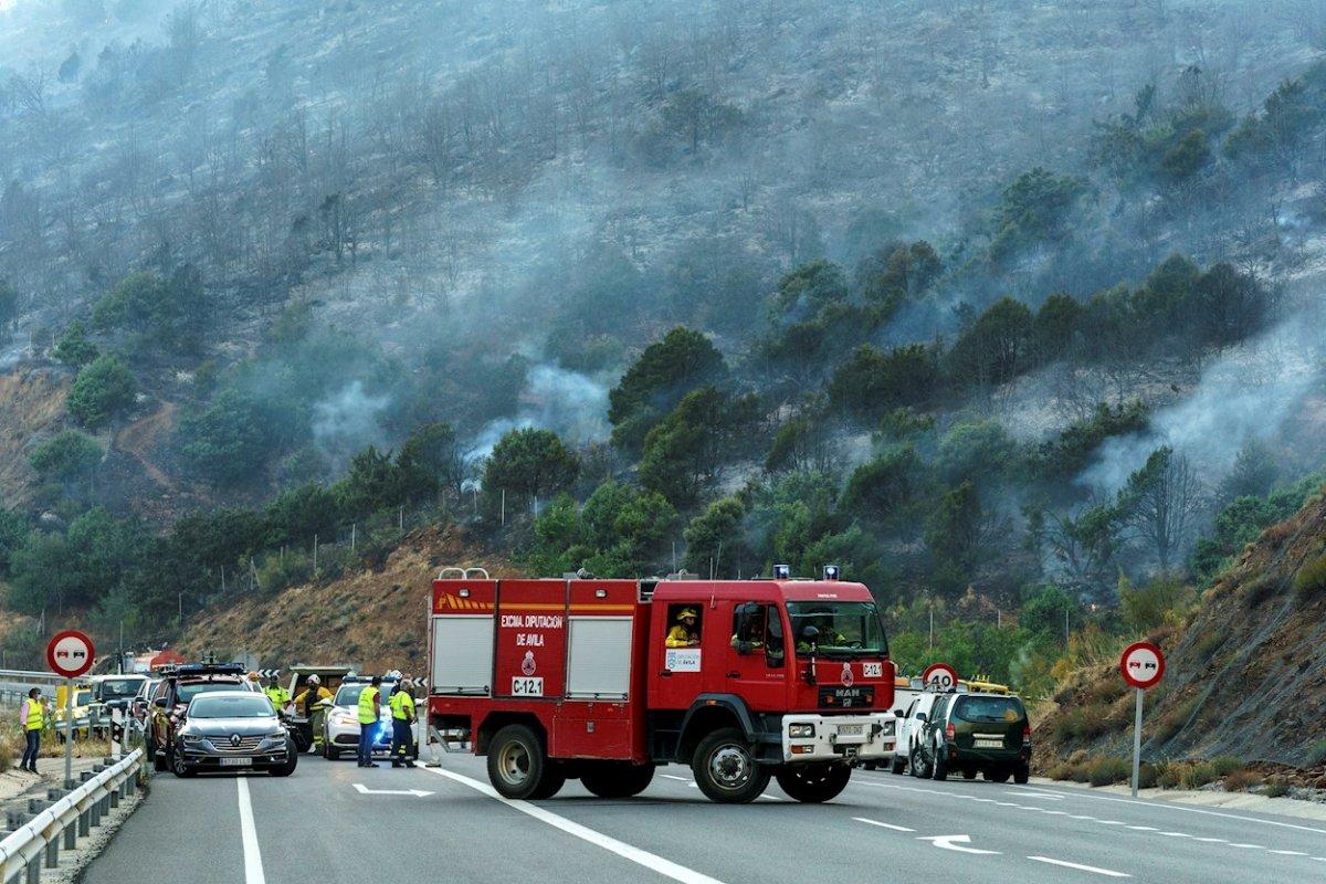 La Asociación Nacional de Mayorales redactará un informe sobre las zonas afectadas por el incendio de Ávila