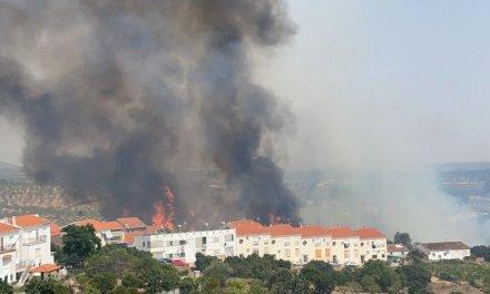 VIDEO: Controlado el incendio forestal declarado este miércoles en Perales del Puerto