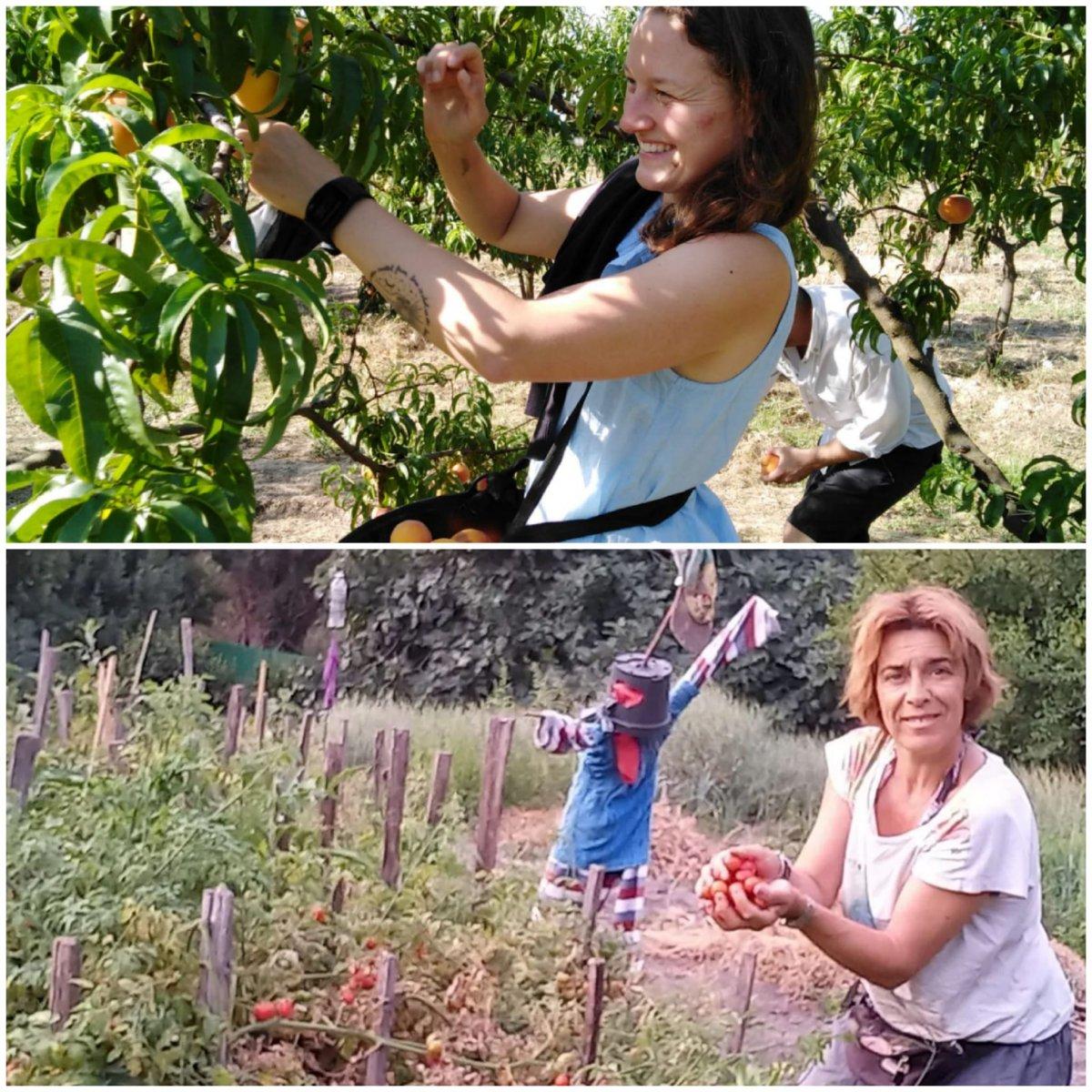 Dos vecinas de Sierra de Gata ponen en marcha una iniciativa para evitar el desperdicio de alimentos