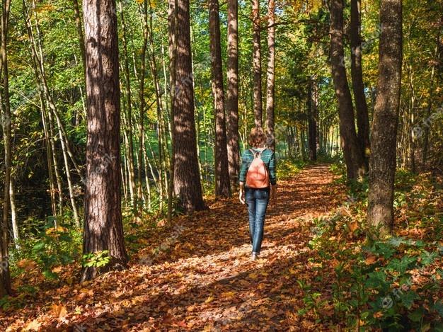 Extremadura tendrá un otoño con temperaturas más cálidas y con una caída ligera de lluvias