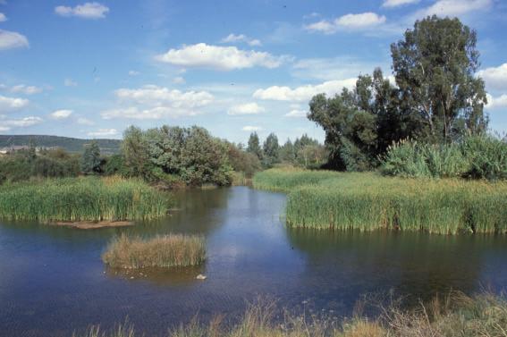 Denuncian la extracción de áridos sin permisos en el entorno del río Guadiana en Don Benito